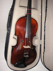 bowed string instrument, string instrument, violin, viola, bass violin, cello, string instrument,