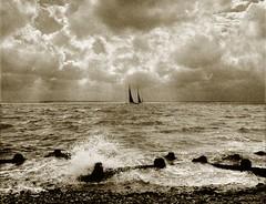 coastal in monochrome