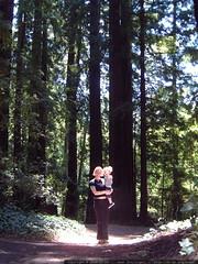 rachel carrying nick through the redwoods   dscf8639