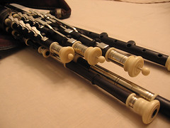 flute(0.0), rifle(0.0), western concert flute(0.0), cue stick(0.0), firearm(0.0), gun(0.0), gun barrel(0.0), woodwind instrument(1.0), wind instrument(1.0),