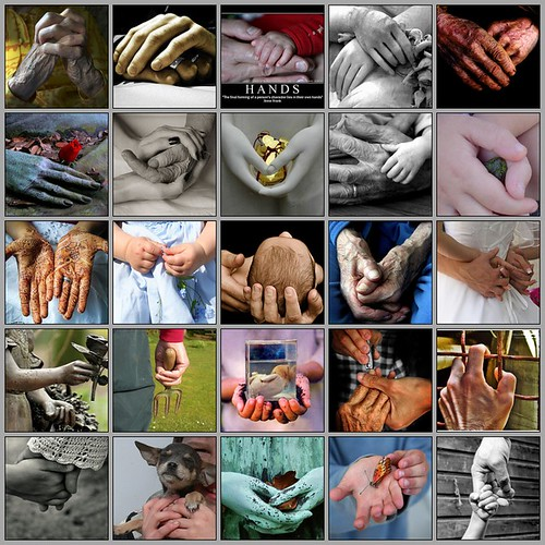 Hands of  love, life and tenderness