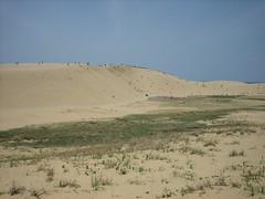 steppe(0.0), plateau(0.0), wadi(0.0), grassland(0.0), prairie(1.0), erg(1.0), soil(1.0), sand(1.0), plain(1.0), aeolian landform(1.0), natural environment(1.0), desert(1.0), dune(1.0), landscape(1.0), badlands(1.0),