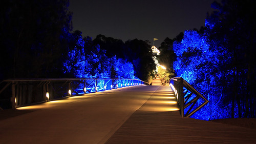 Night Foot Bridge