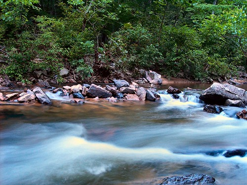 trees summer greenleaves mountains water leaves river virginia rocks stream forrest rapids shenandoahvalley movingwater naturescene calendarshots theworldthroughmyeyes easternnorthamericanature markschurig