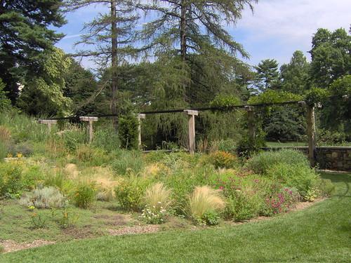 Dry garden with arbor