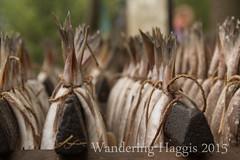 Herring tails