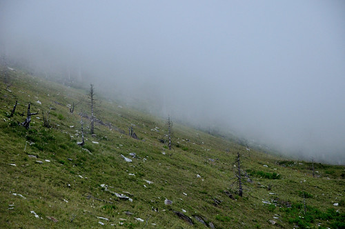 雪山369山莊後方