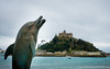 Dolphin overlooks St Michael's Mount in Marazion at Godolphin Hotel