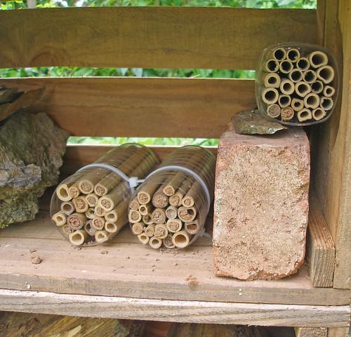 Experimental Bee House end of season