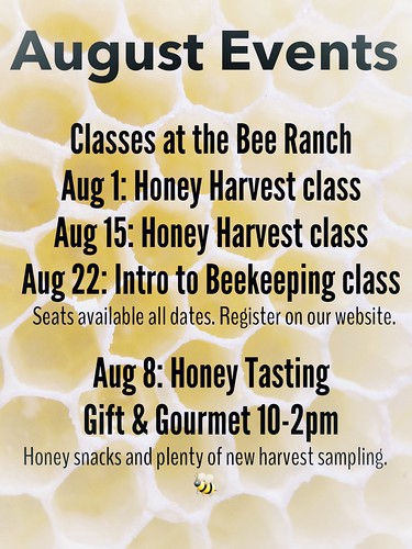 Busy bees in August