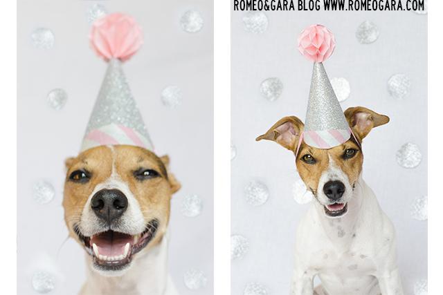Cumpleaños de Gara 2015