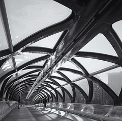 Peace Bridge, Calgary.