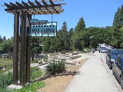 Berkeley Rose Garden - Berkeley, California