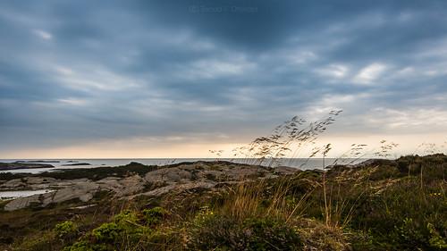 ocean blue sunset sky cloud nature norway landscape wind horizon straw sotra nikkor1635mmf4 nikond750 thenorwegiancoast