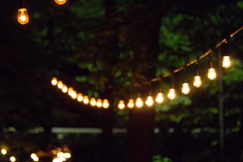Foresta Lumina - August 2015
