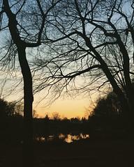 Lake Braddock sunset