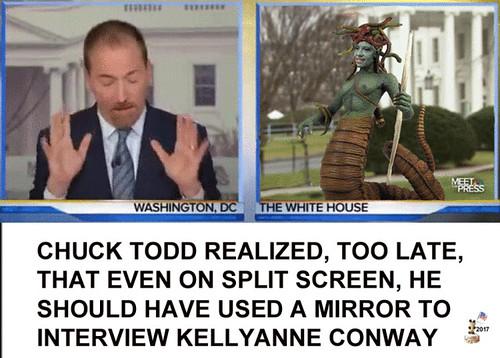 CHUCK TODD INTERVIEWS KELLYANNE CONWAY