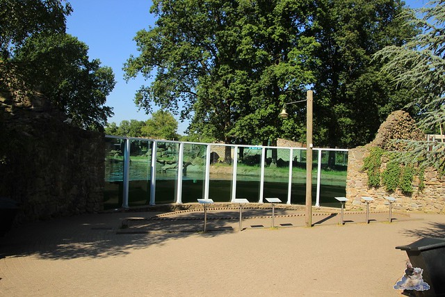 ouwehands dierenpark 30.06.2015  11