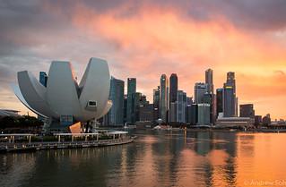 The Helix Bridge की छवि. marinasands singapore artscience museum skyline hdr sunset bay reflection water