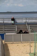 Cuxhaven-Strandpromenade-Duhnen-Doese_003