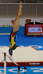 floor gymnastics(0.0), amateur wrestling(0.0), greco-roman wrestling(0.0), rings(0.0), individual sports(1.0), sports(1.0), gymnastics(1.0), gymnast(1.0), artistic gymnastics(1.0),