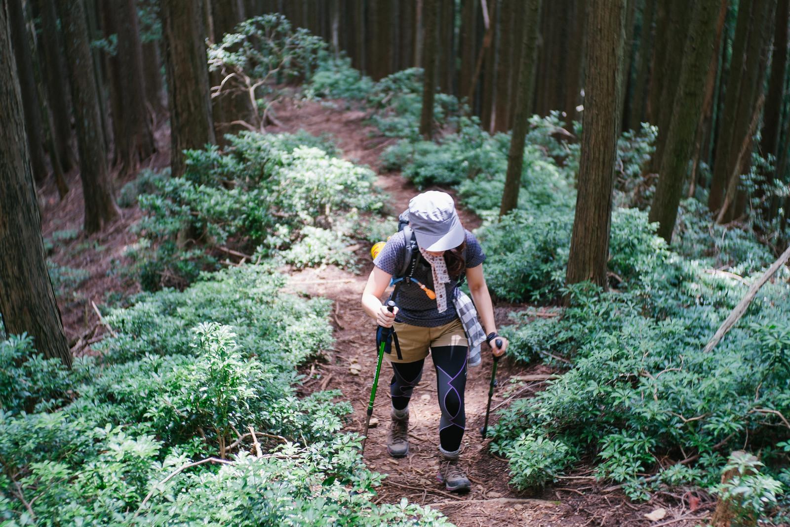 Mt. Takekawa
