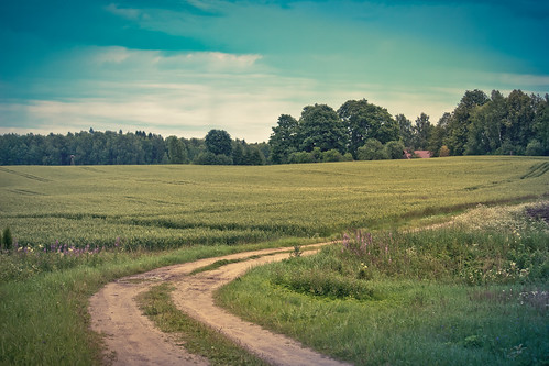 road countryside village latvia lettland latvija дорога sigulda turaida деревня латвия canon700d vitalygoreglad turaidasviesturs purmali