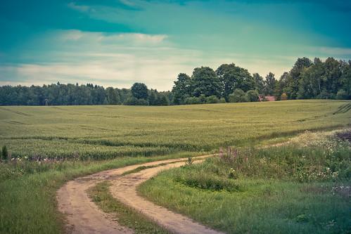 road countryside village latvia lettland latvija дорога sigulda turaida деревня латвия canon700d vitalygoreglad turaidasviesturs purmali