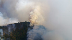 wildfire, cloud, smoke,