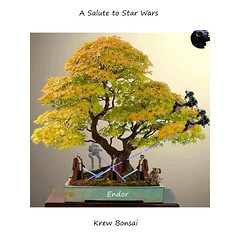 Krew Bonsai Endor