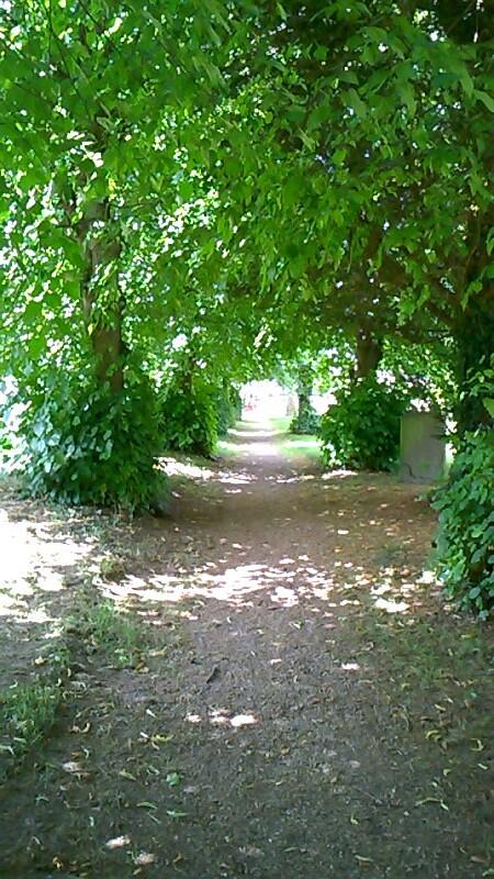 Arbour near Kintbury