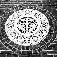 Gryphons.  #architecture #igersboston #details #latergram