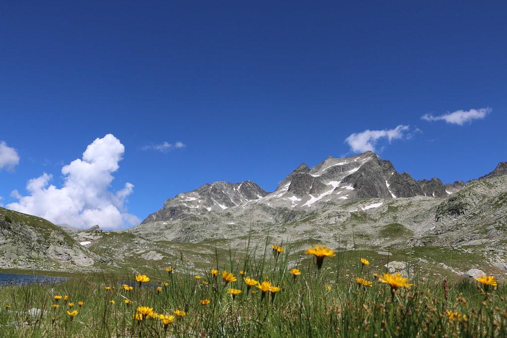 Appart Hotel  Ef Bf Bd La Montagne