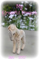 365 Grateful Project