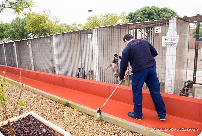 Una inspección sorpresa certifica las buenas condiciones en las instalaciones del CATAD