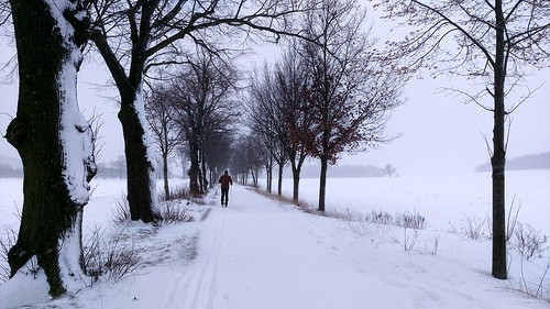 No Snowplow, no problem Tree Snow Cold Temperature Winter Weather Nature Real People Outdoors One Person Day Full Length Beauty In Nature Snowing Men Sky People Adults Only Adult