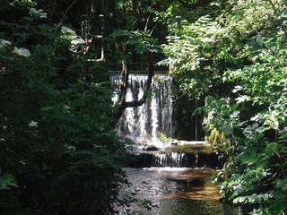 Hitchin Waterfall (the millstream overflow)