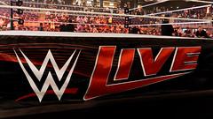 WWE Live 2015 - Antwerpen (Lotto Arena)