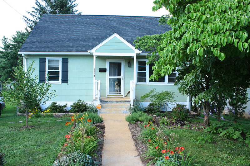 Front yard in July 2015
