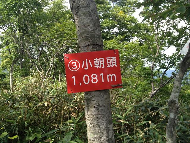金糞岳 中津尾根コース 小朝頭