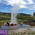 Calistoga_Old Faithful (18)