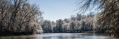 Chatahoochee River, Atlanta, Winter 2017