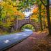 Carriage Road Bridge - Acadia * EXPLORED * by Firoz Ansari