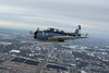 Wings of the North TBM Avenger in the Air!