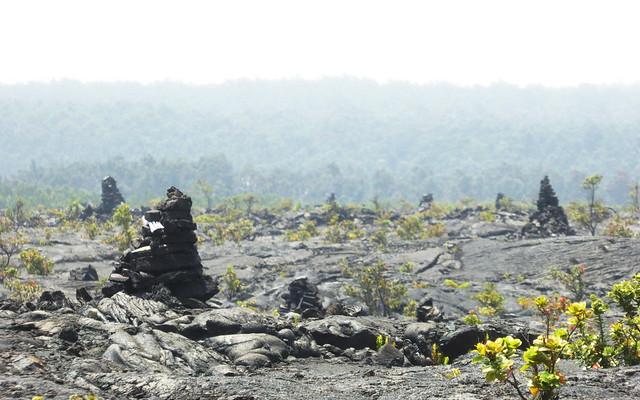 Kerns in a lava field