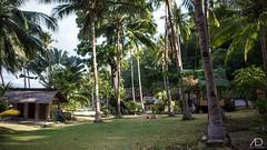 PHILIPPINES - PALAWAN (Web)-214