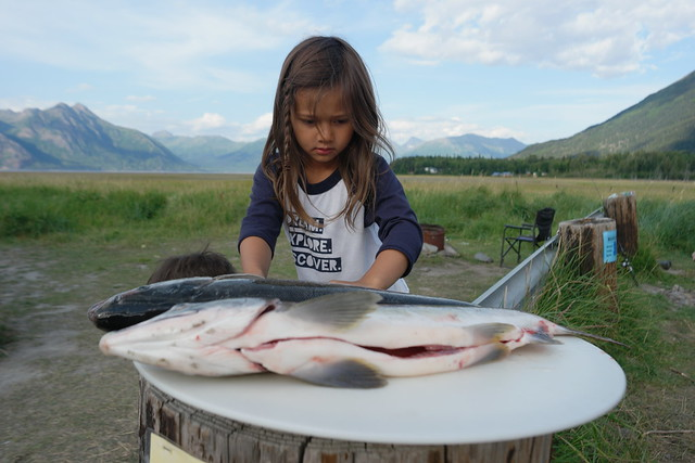 Blog Hope Alaska 2