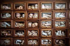 Dolls clinic.