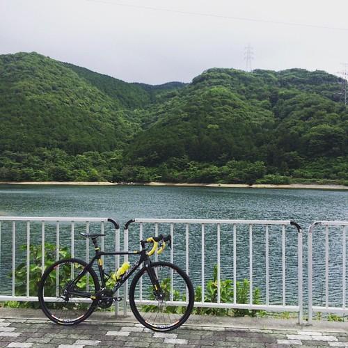 新城富岡MTBコースに来てみました。 #cxjp #cyclingphoto #ridleybikes