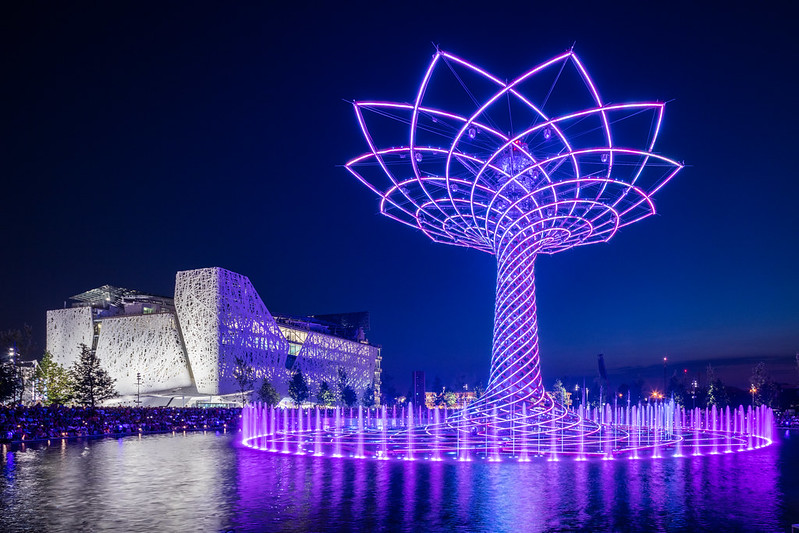 expo tree 1